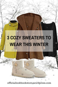 3 Cozy Sweaters To Wear this Winter | Lookbook Store