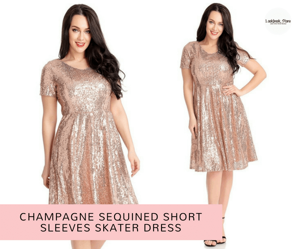 Champagne Sequined Short Sleeves Skater Dress - Lookbook Store